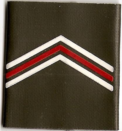 Belgian Army Insignia Scan0004-2