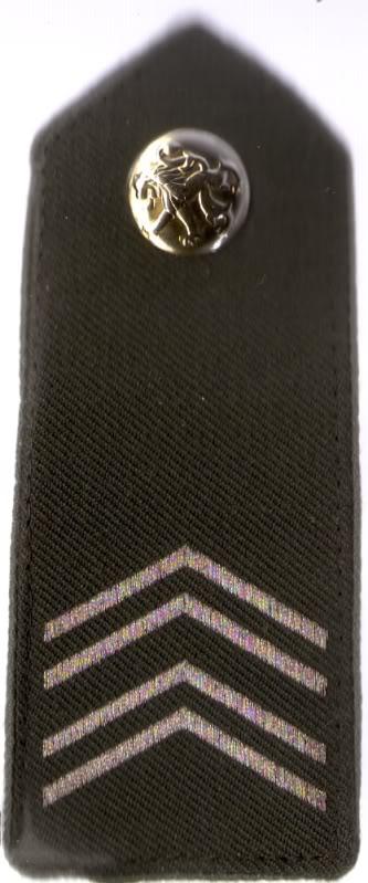 Belgian Army Insignia Scan0017-1
