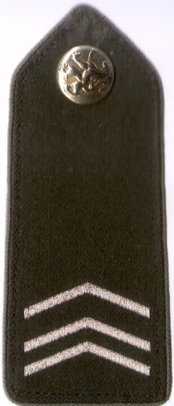 Belgian Army Insignia Scan0018-1