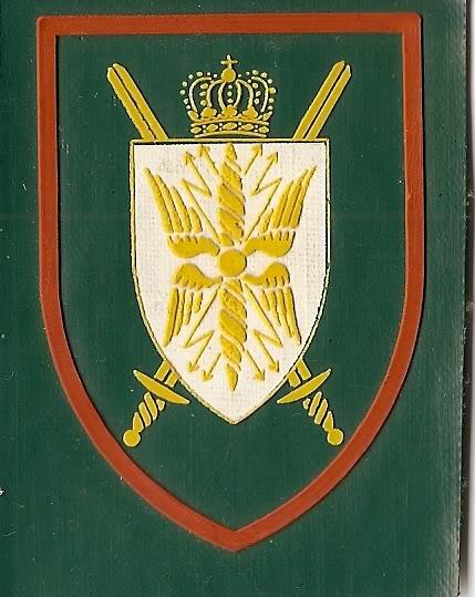 Belgian Army Insignia Scan0031
