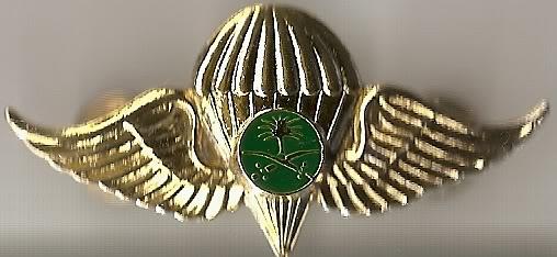 Saudi Jump Wings Scan0037
