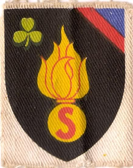 Belgian Army Insignia Scan0039-3