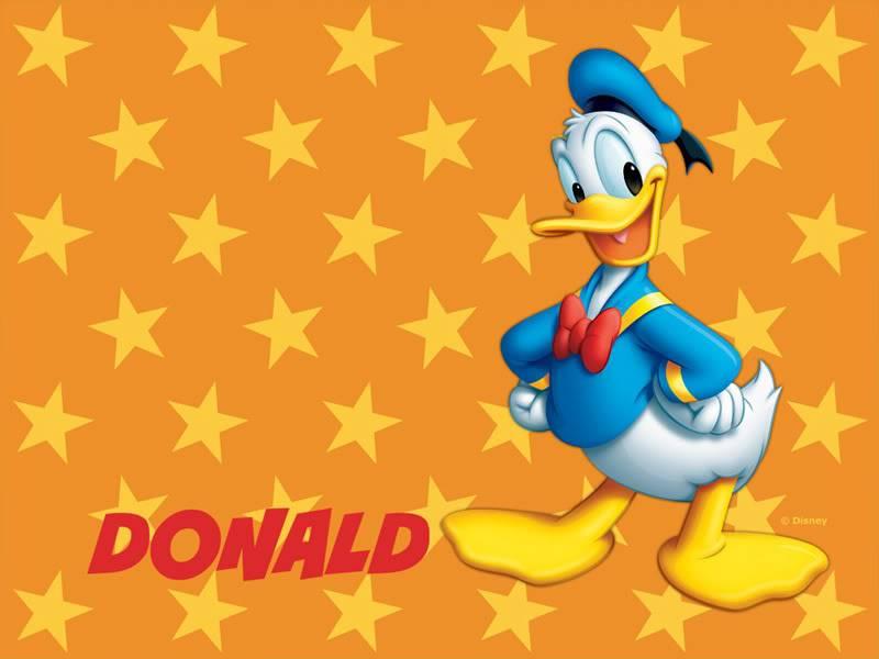 UNA TORTURA EN NARANJA Y AZUL - Página 10 Donald-Duck-Wallpaper-13