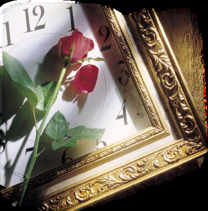 des fleurs, méli-mélo 090211065235284571