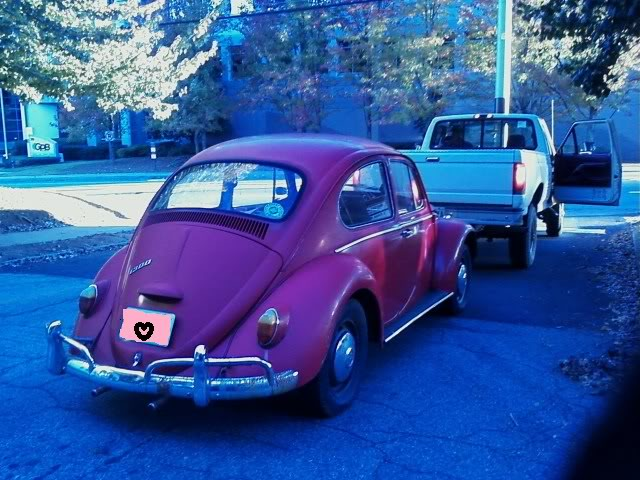 "1966 Bug ""Willow"" Willow1"