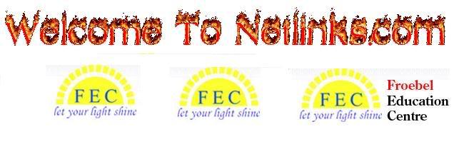Netlinks FEC