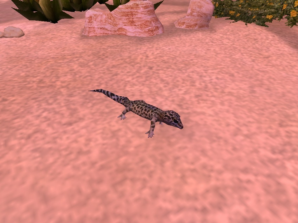 Topics tagged under gecko on User - Made Creations Gecko_zps41f5a4f7