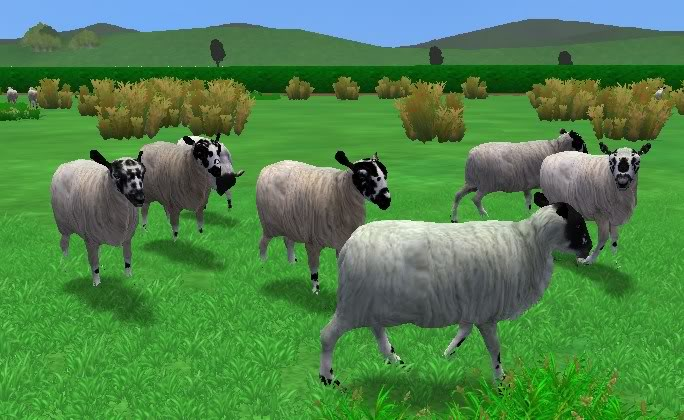 Topics tagged under farm on User - Made Creations Sheepfield1