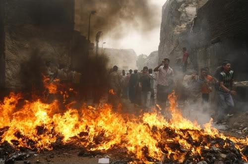 200 à 300 000 cochons en cours d'égorgement en Egypte 610x-17-1