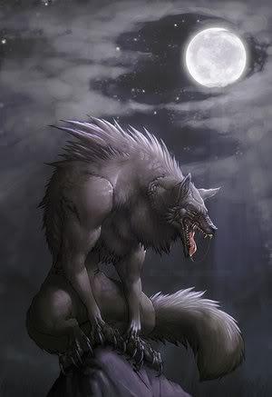 Werewolf's Wisper: Da OnexOnexOne XD Lycanthrope