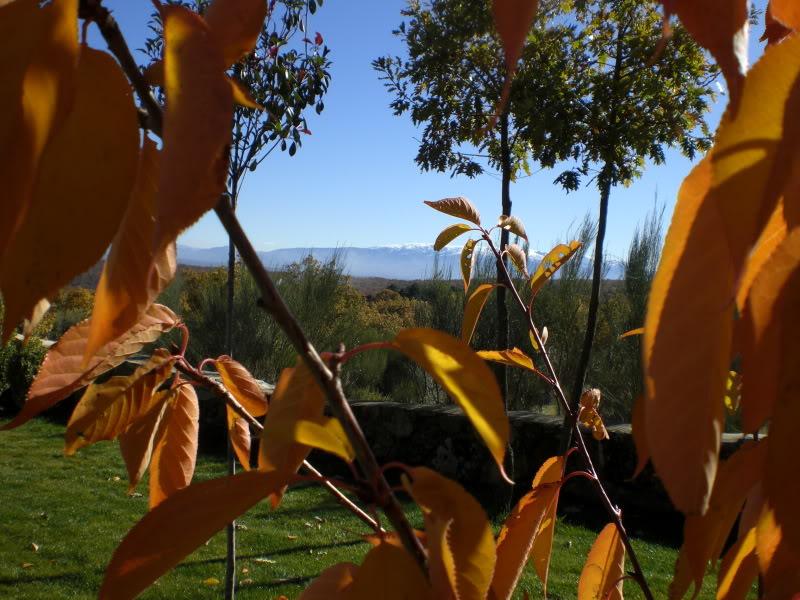 நான் ரசித்த மலைகளின் காட்சிகள் சில.... - Page 2 Spain2008297