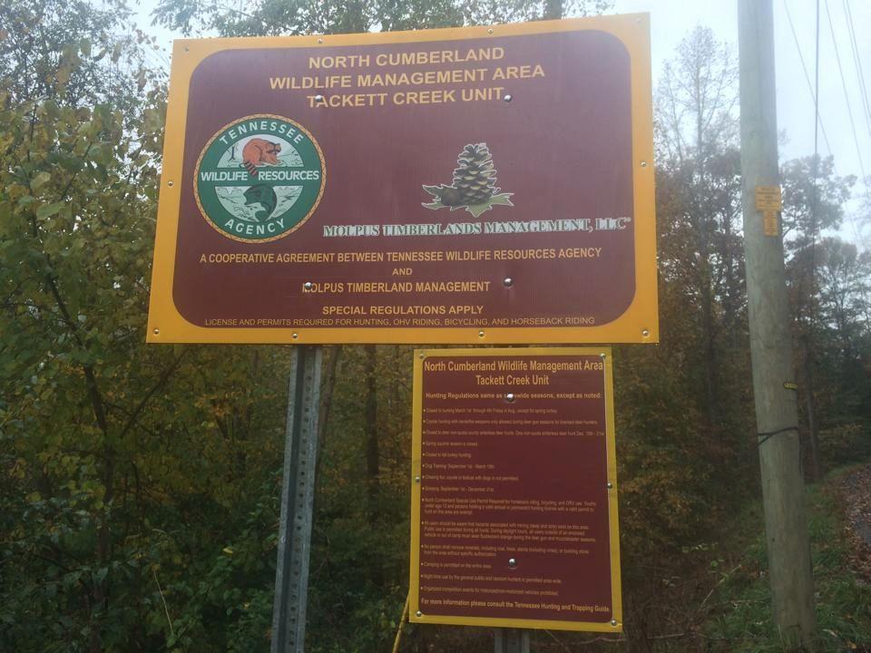 Tackett Creek Cumberland Management Area? TackettCreek_zpsa88a9ba9