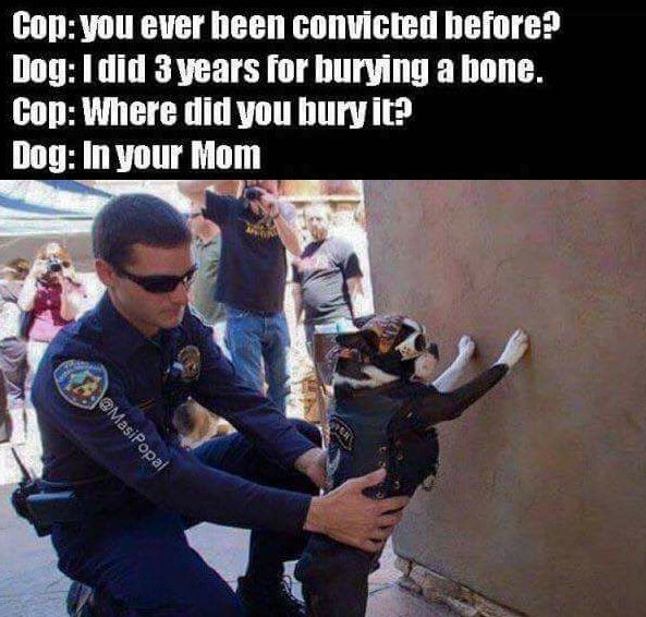 The Picture Jokes thread - Page 17 Dog-cop_zpsuozc6vzd