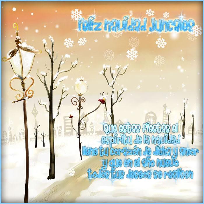 Amigo invisible navidad 2011 - Página 8 0123654