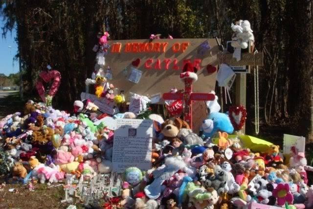 Caylee's Memorial Site/Fox Bloggers - Page 2 CayleememorialJanuary8