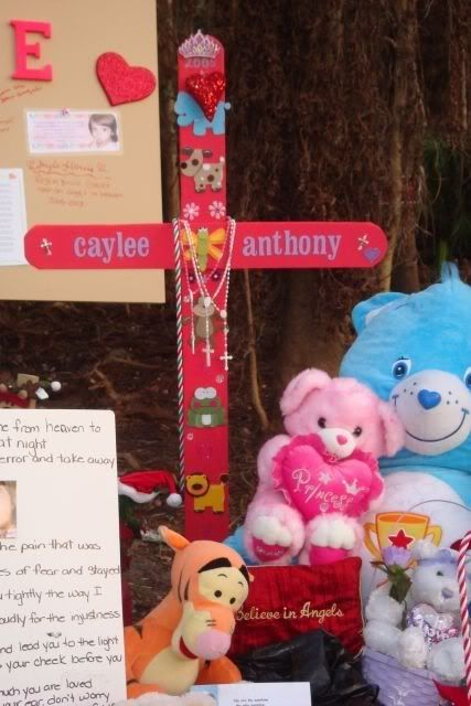 Caylee's Memorial Site/Fox Bloggers Cayleenoteboard29