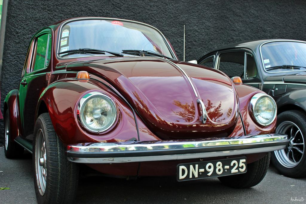 Exposição Clássicos Volkswagen | 1 a 10 maio'15 | C.C. Mira-Maia IMG_10078_zpsmuolhjn9