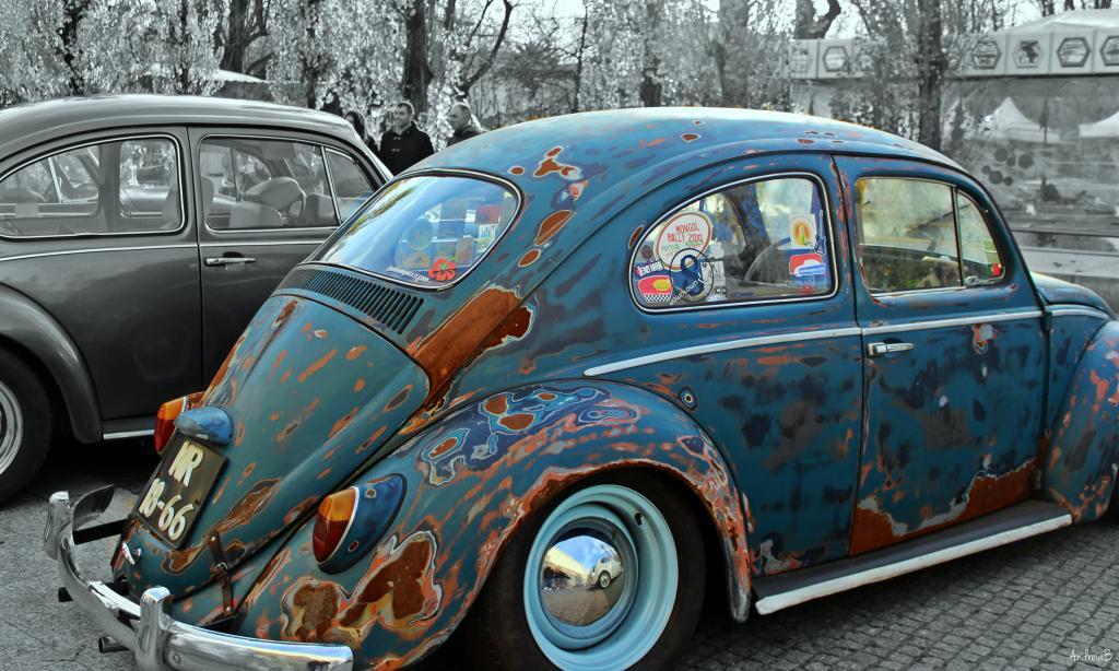10' Convívio de Natal de Amigos dos VW Clássicos - 13 Dezembro 2014 - Matosinhos - Página 2 IMG_8822_zpsd8ba773e