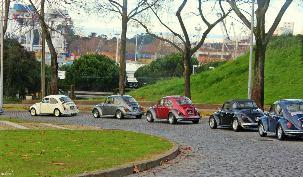 10' Convívio de Natal de Amigos dos VW Clássicos - 13 Dezembro 2014 - Matosinhos - Página 2 IMG_8908_zpsc712b533