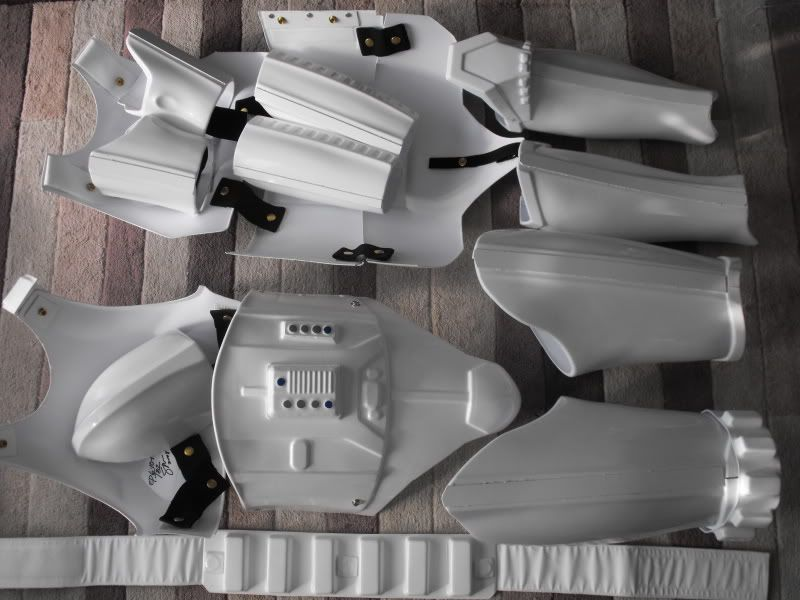 Your own personal stormtrooper evolution! TE2FS002