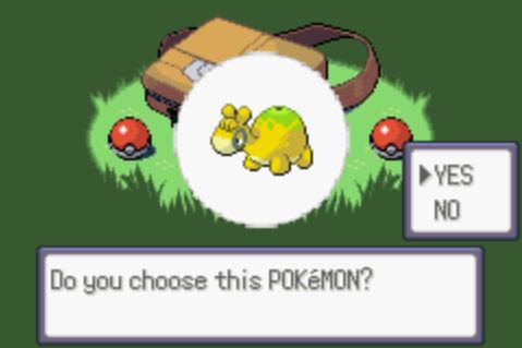 Pokémon Emerald: CE [Champion's Edition] CEScreen3