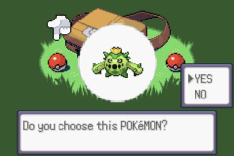 Pokémon Emerald: CE [Champion's Edition] CEScreen5