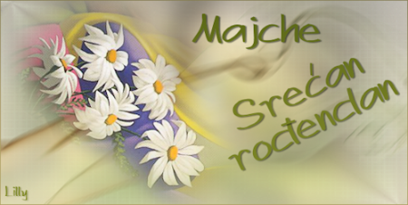 MajcheZmajche, srecan ti rodjendan! Majche-rodjendan2011-1