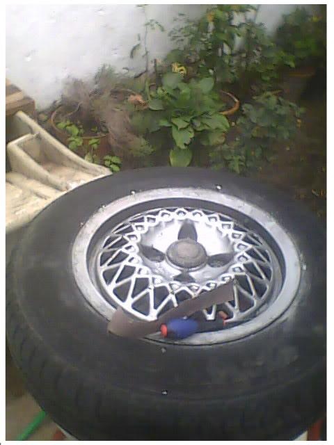 A minha garagem IMG0369A