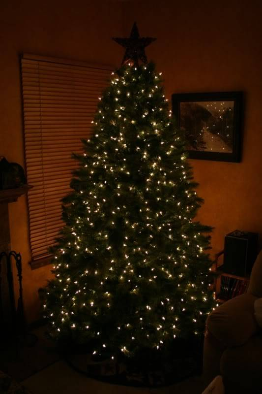 Post up pics of you holiday decorations Tree1