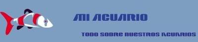 Mi Acuario - http://miacuari Banner01