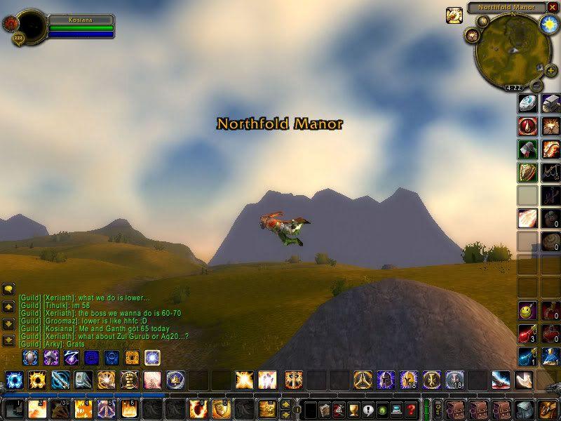 flying bug