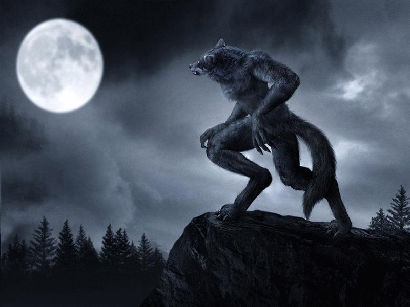 Werewolf of England [17+]  Werewolf-1