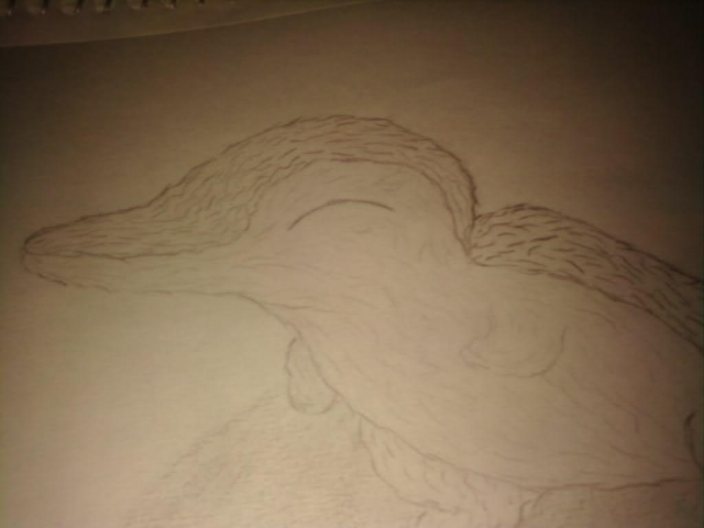 Nicole's Drawings 0728091421a
