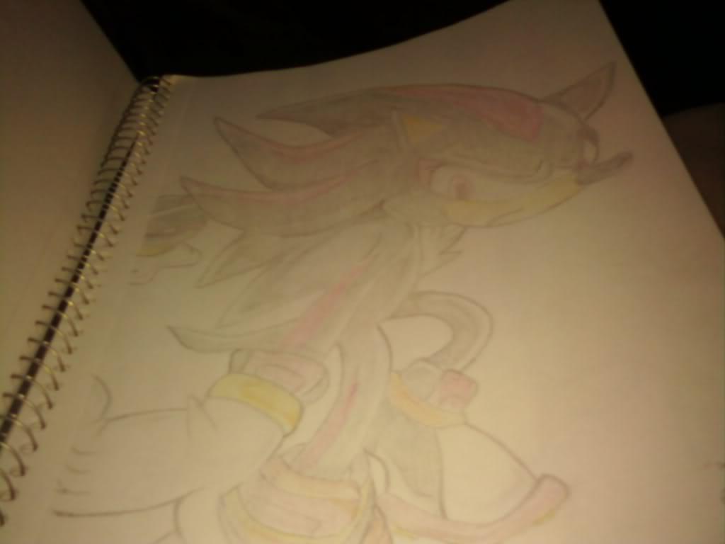 Nicole's Drawings 0728091423