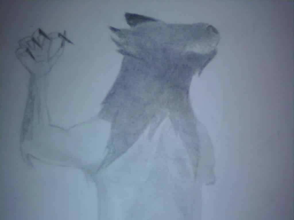 Nicole's Drawings 0729091625