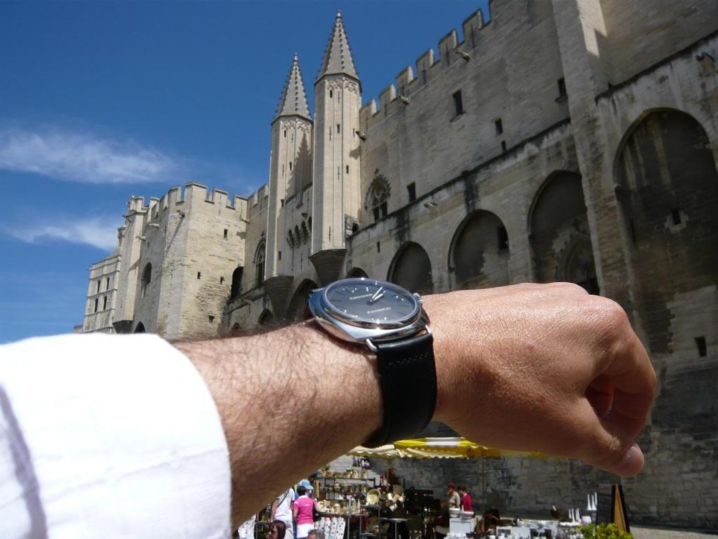 Wristshot de vos belles devant des monuments emblématiques - Page 2 PAM210AVIGNON