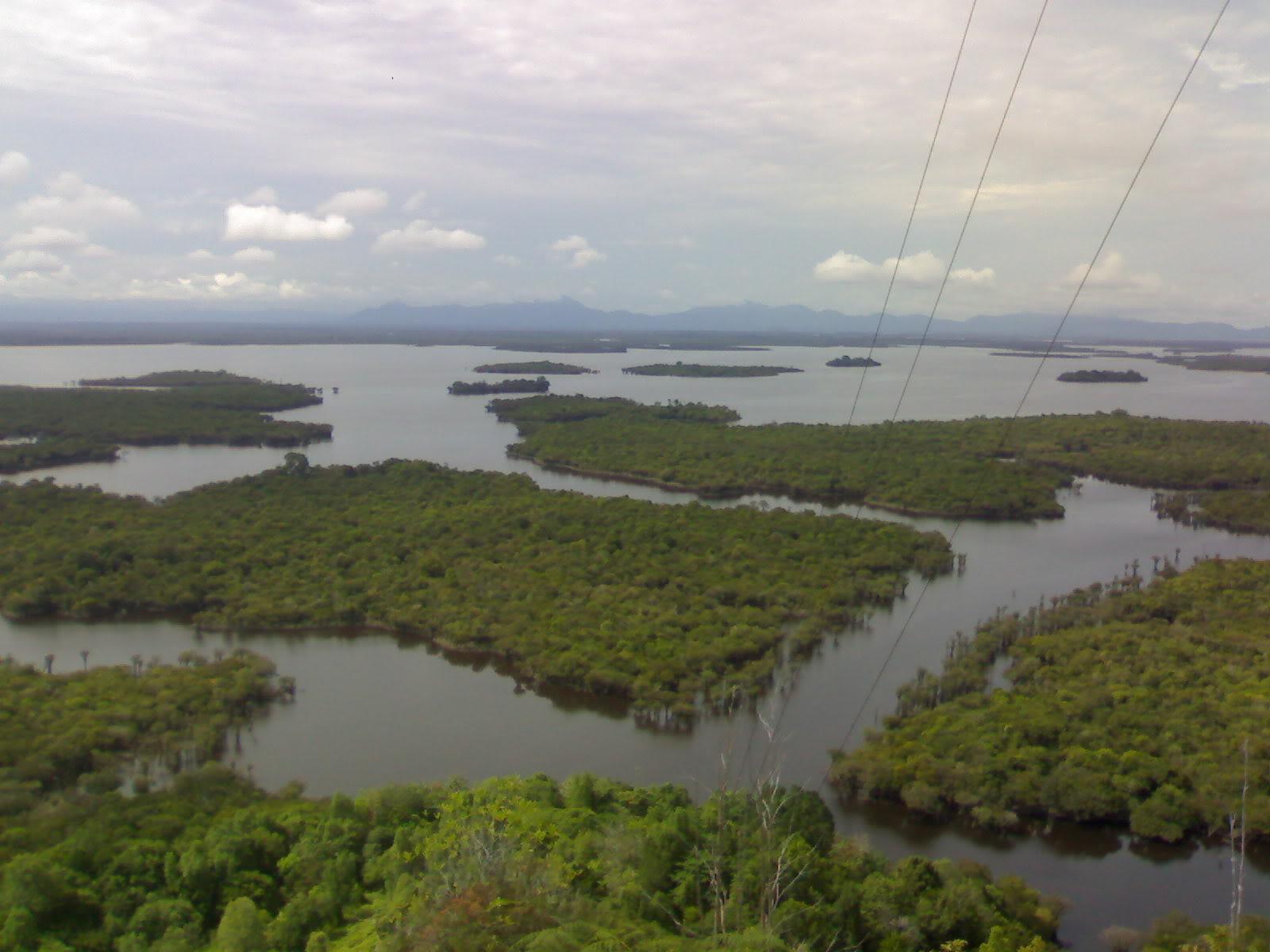 PARC NATIONAL DU LAC Sentarum (Kalimantan  île de Bornéo) 020720084759