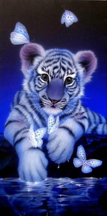 Animal Lover 1235_white-b-tiger-butterly