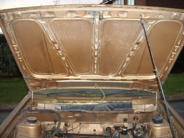 NEW PROJECT - mk1 Golf Driver Gold2ndOct029