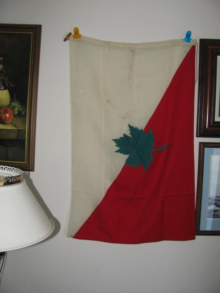 WW2 Flag I.D. IMG_0284_zps7f9281e2