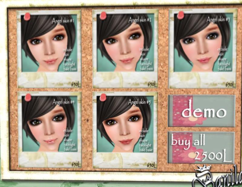 Petites boutiques de skins - Page 3 Banilacoco_004