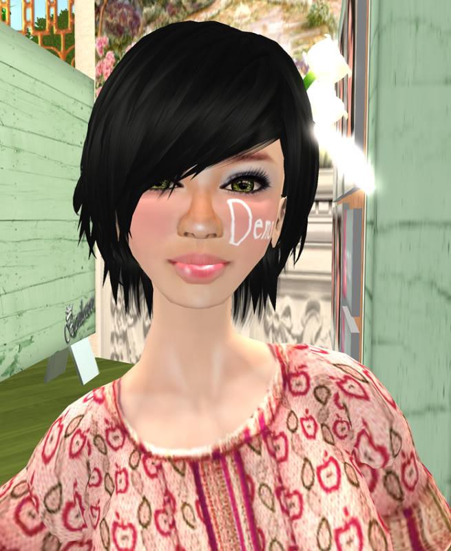 Petites boutiques de skins - Page 3 Banilacoco_006