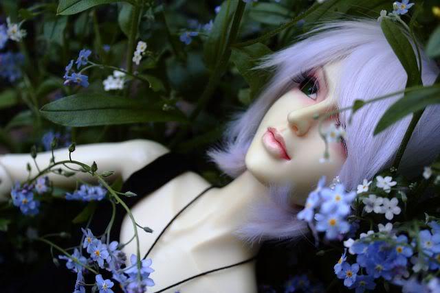 Cara: Lover's Diary _MG_9269