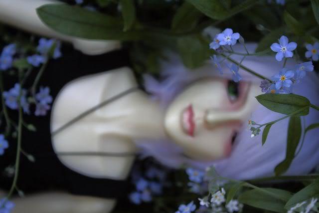 Cara: Lover's Diary _MG_9271