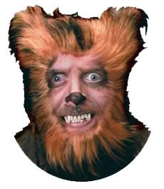 Guac--Hello Everybody! Chumpmanbear