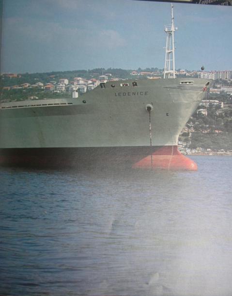 Ledenice (1979) DSCF3836