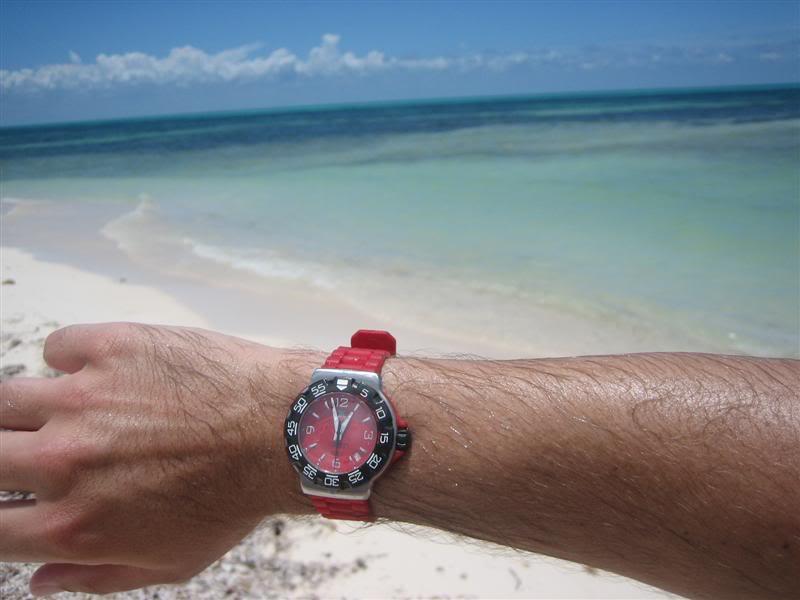 Watch-U-Wearing 08/22/09 Cruise146Medium
