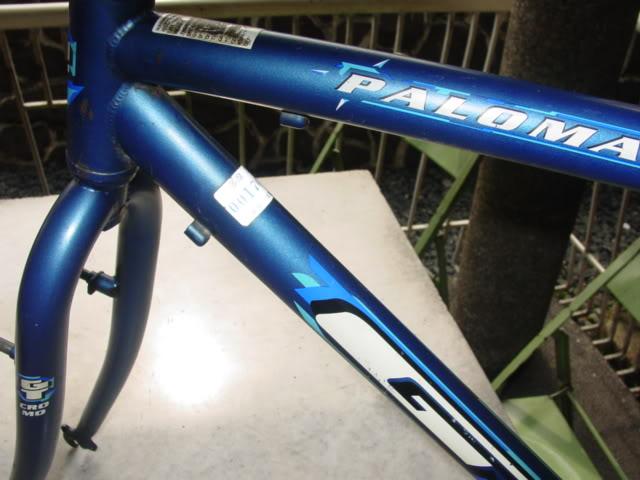 help with my first  ss bike DSC07197