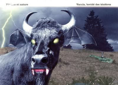 """""""Avacalhar"""" com isto!!! - Página 2 Cows-Vaculacowsofthenight"""