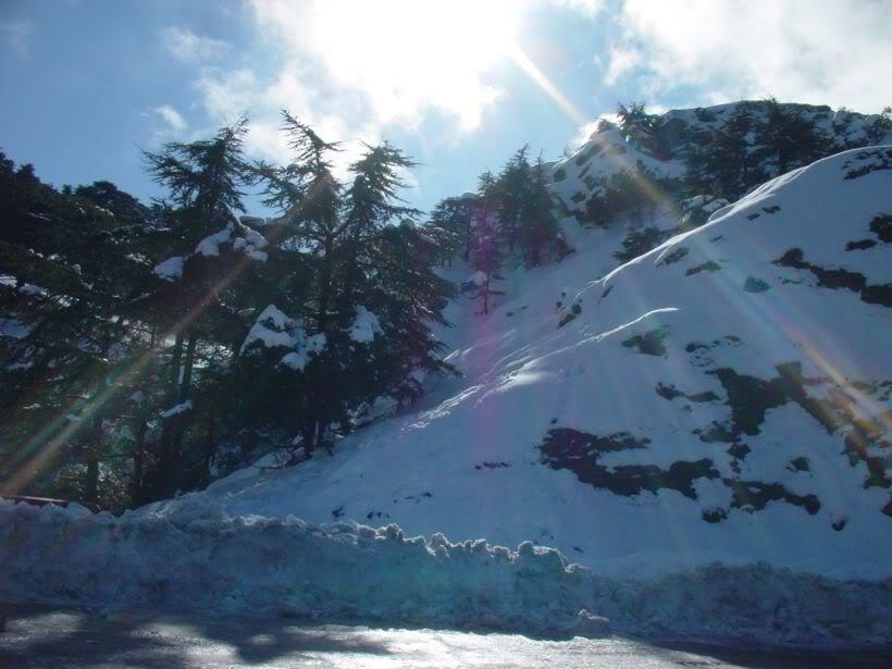 مناطق ثلجية من السياحة الجزائرية   A4